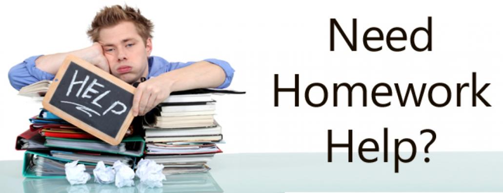 Live homework help instruction files